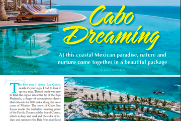 Cabo Dreaming