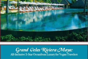 All- Inclusive 5-Star Oceanfront Luxury for Vegan Travelers